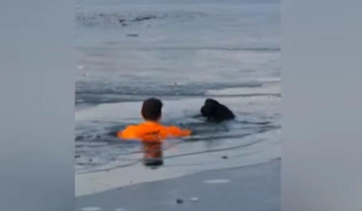 Se tiró a un lago congelado para rescatar a un perro