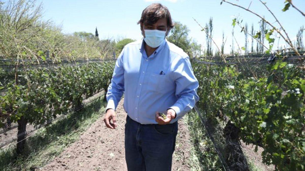 El Gobierno de Mendoza están realizando relevamientos para conocer los niveles de daños que provocó esta fuerte tormenta de lluvia y granizo.