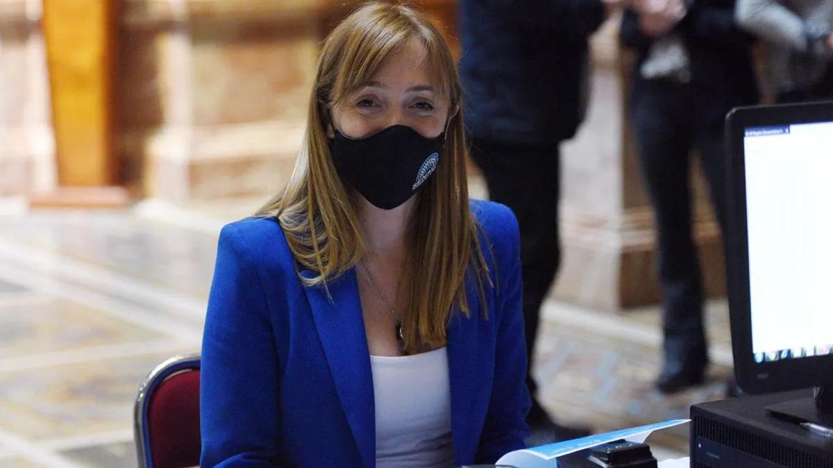 Anabel Fernández Sagasti ya presentó el proyecto en la Cámara de Senadores.