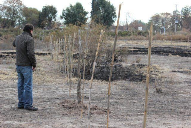 En alerta por la toma de terrenos en Alvear