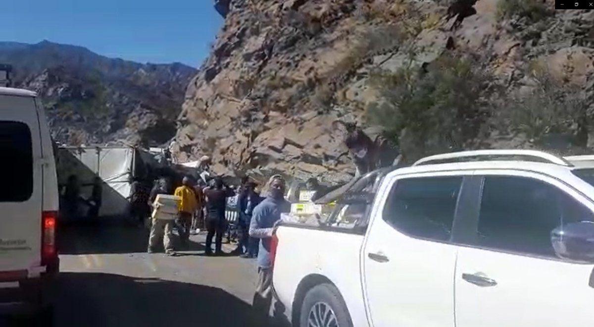 Un camión con pollos volcó en la Ruta 7 entre Potrerillos y Uspallata y la gente se llevó las cajas con pollos