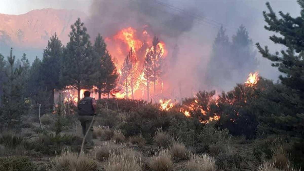 La persistente llovizna llevó algo de alivio a la situación provocada en El Bolsón por un incendio forestal que en cuatro días arrasó más de 10 mil hectáreas