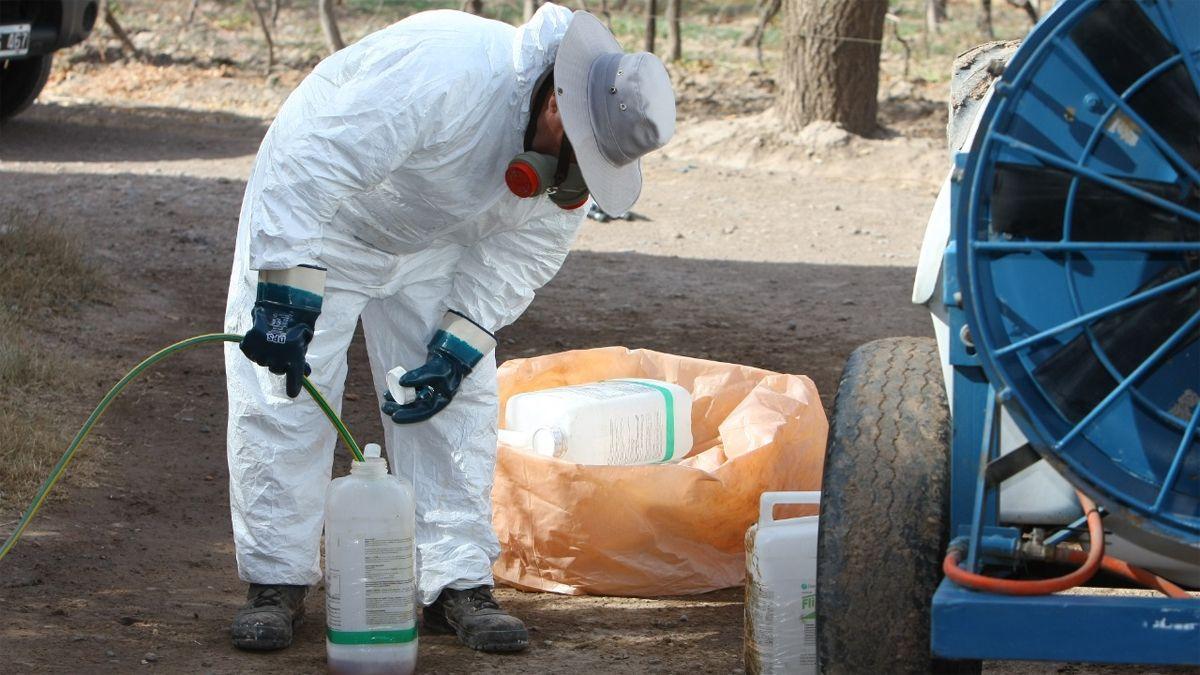 Un programa se encarga de los envases vacíos de fitosanitarios.