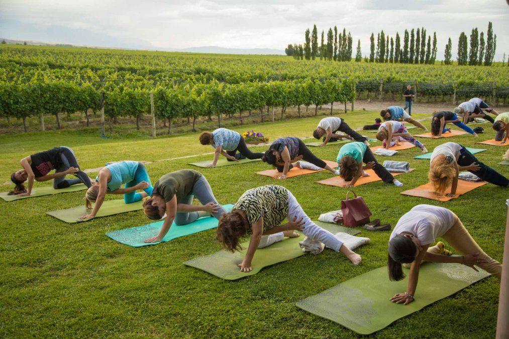 Jumbo ofrece a sus clientes el poder disfrutar durante febrero del programa Yoga por los Caminos del Vino.
