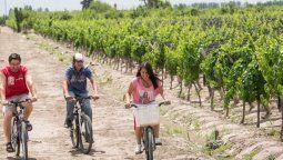 Mendoza prepara sus protocolos para poder habilitar el turismo nacional
