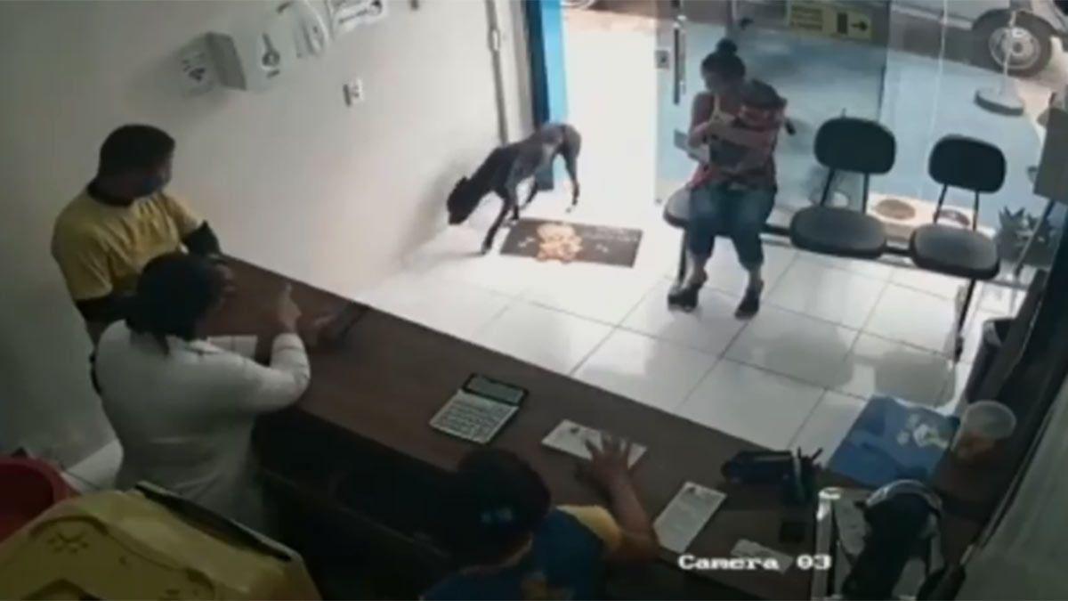 Captura de video: el perro entró a la veterinaria y mostró sus heridas.