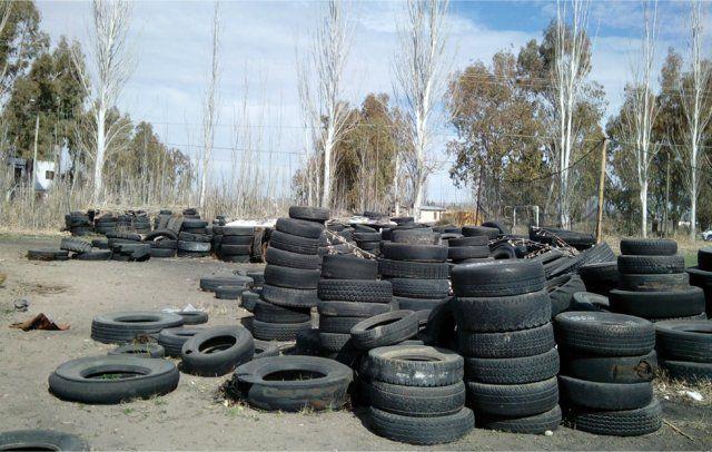 Miles de neumáticos se apilan todos los meses en Mendoza