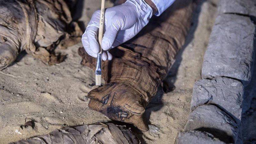 Científicos abrieron la momia de un gato egipcio y se llevaron una sorpresa