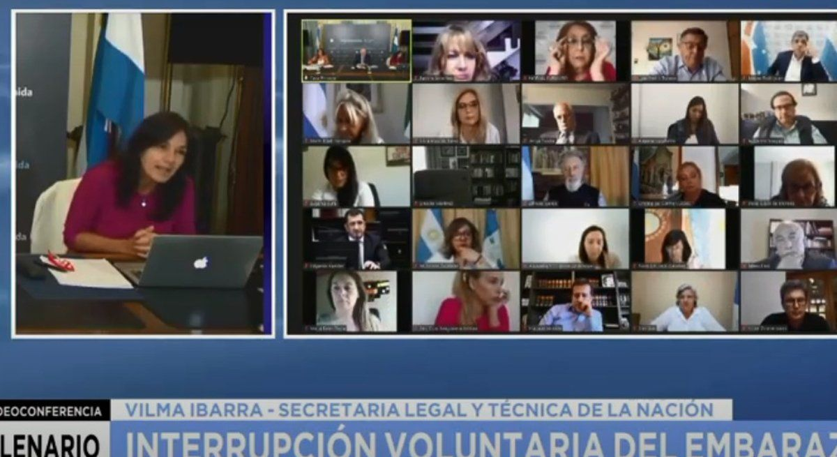 Aborto legal: Ibarra pidió frenar las muertes evitables