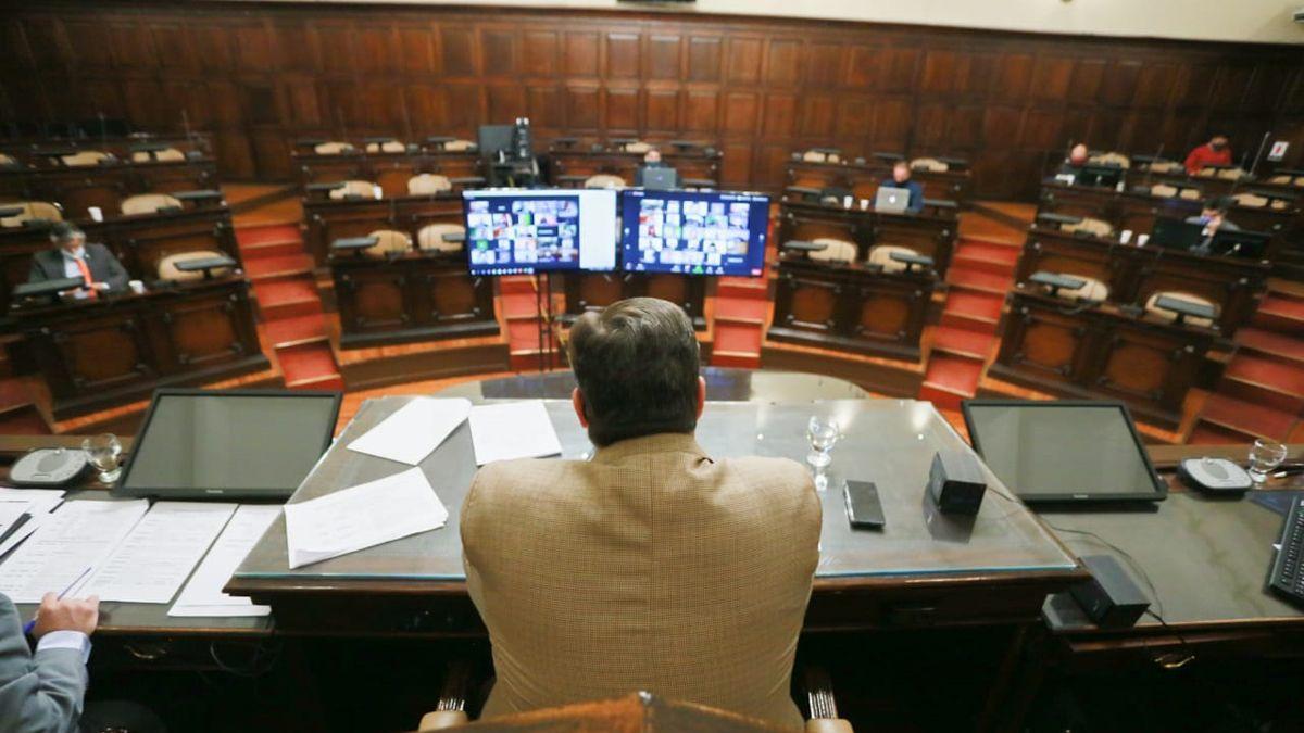 El Senado amplió un artículo la ley sobre violencia de género.