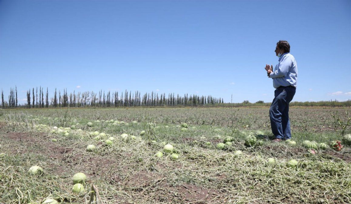 Qué dice el pronóstico del tiempo. El director de Contingencias Climáticas, Julio Eluani, recorrió los distritos de San Rafael afectados por la fuerte tormenta de granizo. Foto: Gobierno de Mendoza.