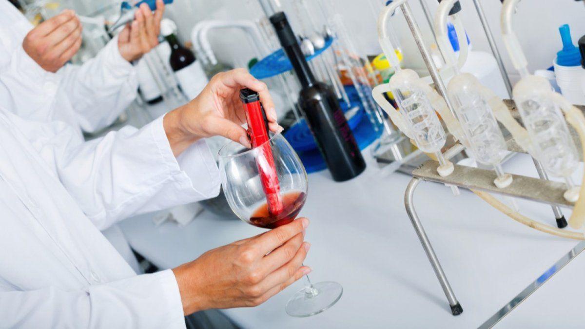 El INV y el INTI lanzaron un vino patrón que abarata costos de laboratorio a las bodegas y asegura parámetros de calidad.